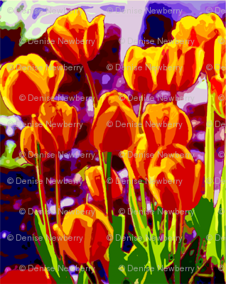 Tulip_Garden_Morning