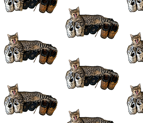Buster and Shoes fabric by captiveinflorida on Spoonflower - custom fabric
