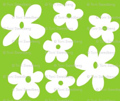 Ditsy Green Daisies