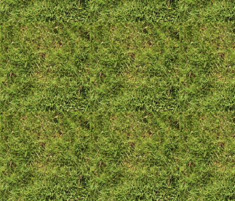 grass_copy fabric by avelis on Spoonflower - custom fabric