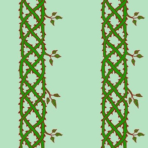 wild rose celtic ribbon green