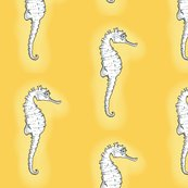 Rrseahorse3_shop_thumb
