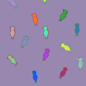 parrots_new