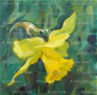 daffodil-oil-pochade-chris-carter-artist-040510b