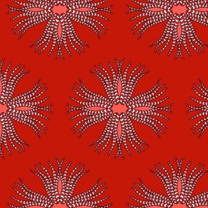 candy_cane_anemone