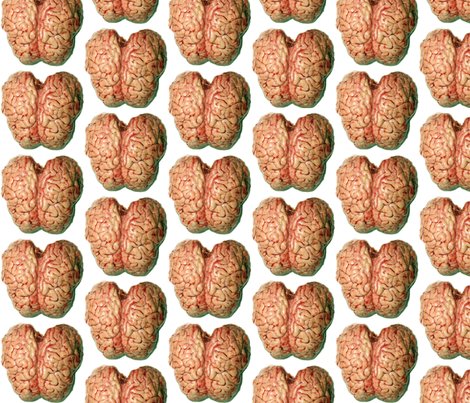 Brain Reign fabric by squarejane on Spoonflower - custom fabric