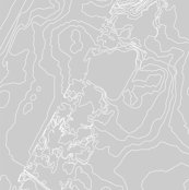 Rcentral_park_grey-53x36_layout_shop_thumb