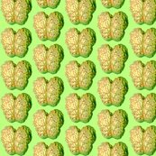 Rrzombiebrainsgrn_shop_thumb