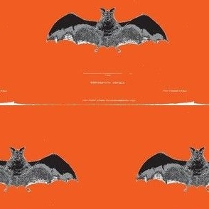 Vintage Printable - Bat zoological illustration- Orange background