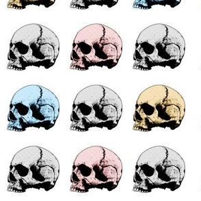 human_skull_pattern