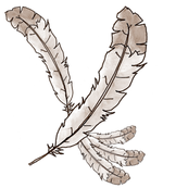 Sepia Feather