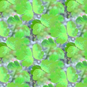 Columbine leaves