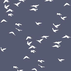 Birds Slate Grey