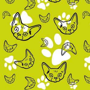 Roz_in_lime