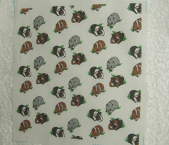 Guinea Pig FQ patches
