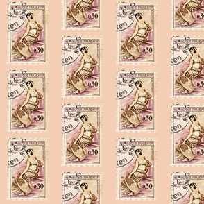 French Postage Stamp Pale