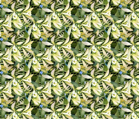 Rrvanilla_orchid_fabric_ii_copy_ed_shop_preview