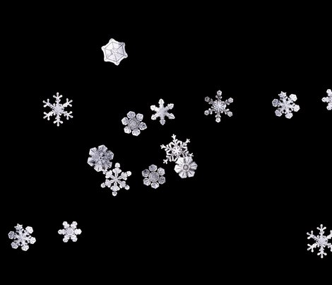Rsnowflakes1_shop_preview
