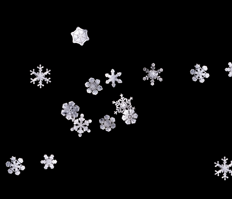 Snowflakes 1 (Flurries) fabric by chris on Spoonflower - custom fabric