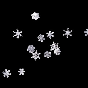 Snowflakes 1 (Flurries)