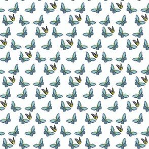 Butterflies Scatter-wht