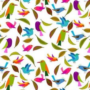 oiseau du paradis S