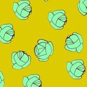 Rgreencabbage_shop_thumb