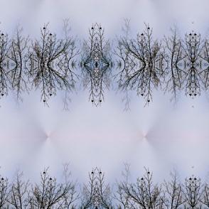 Birds on a branch