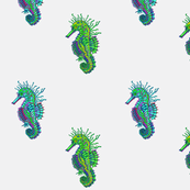 Seahorse white blue and green