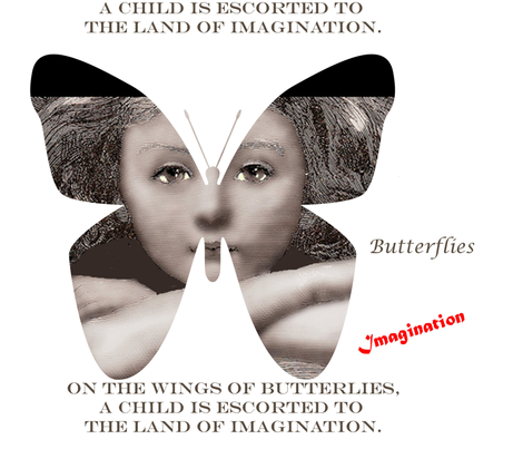 On the Wings of Butterflies