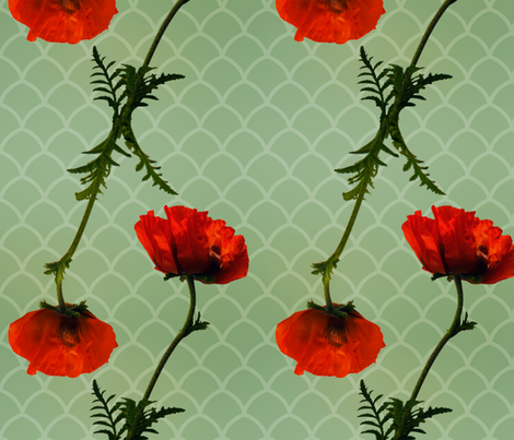 Poppies fabric by jadegordon on Spoonflower - custom fabric
