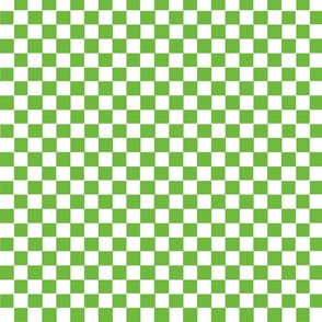 gingham_green_white