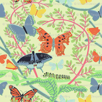 Colorful Butterflies and Caterpillars
