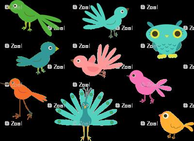 Various Colourful Birds