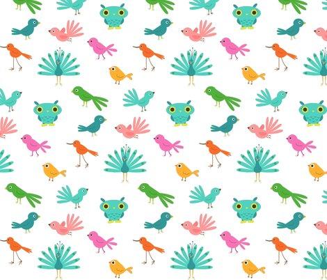 Rrrbirds1_shop_preview