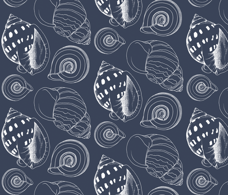 Sketchy Seashells fabric by pattysloniger on Spoonflower - custom fabric