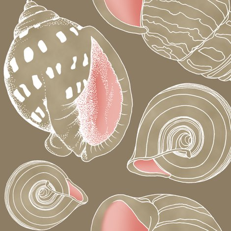 Rrrrrrseashell_sketch_tan4_shop_preview