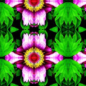 Taft Flowers