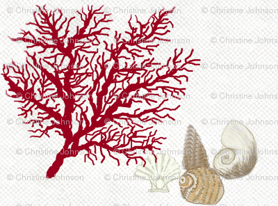 Red Coral and sea shells