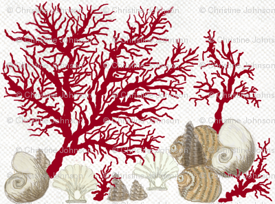 Mirrored / Red Coral and sea shells / Lt