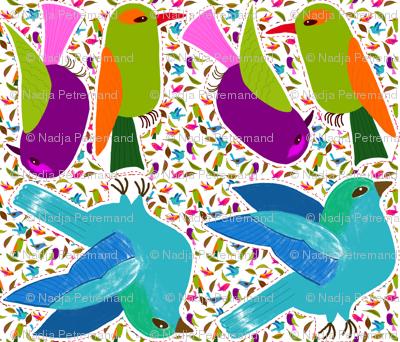 cousin oiseau vert