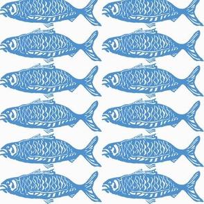 school o fish brite blu-