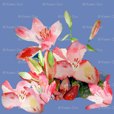 Pink Daylily Patterns