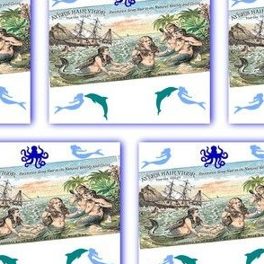 Shipwrecked Mermaids