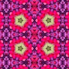 petals kaleidoscope