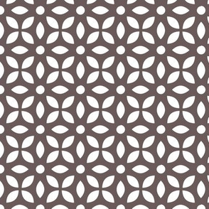 White On Grey-brown Jaali