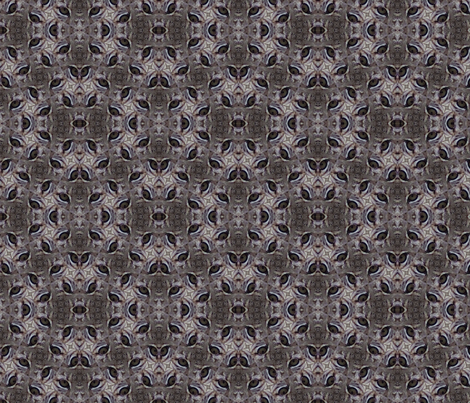 desert eyes fabric by lee_thomas_designs on Spoonflower - custom fabric