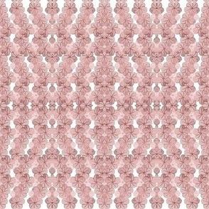 Sheer Pink Sakura