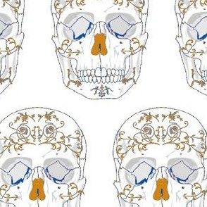 human_skull_front-orange blue-ch