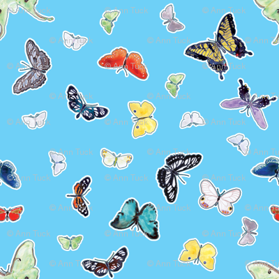 Butterflies in Watercolor